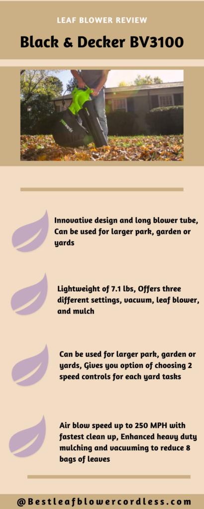 Black & Decker BV3100 Leaf Blower Reviews