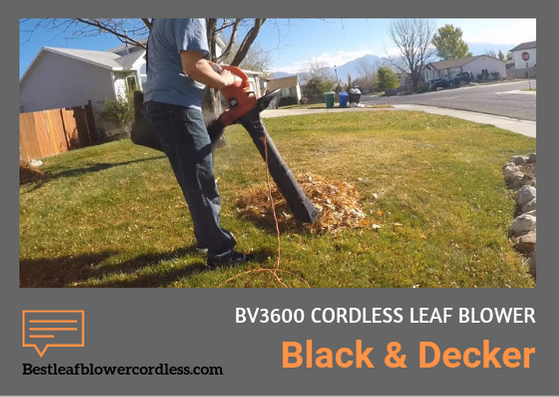 Black Decker BV3600 Leaf Blower Reviews