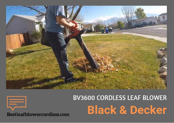 Black Decker BV3600 Leaf Blower Reviews