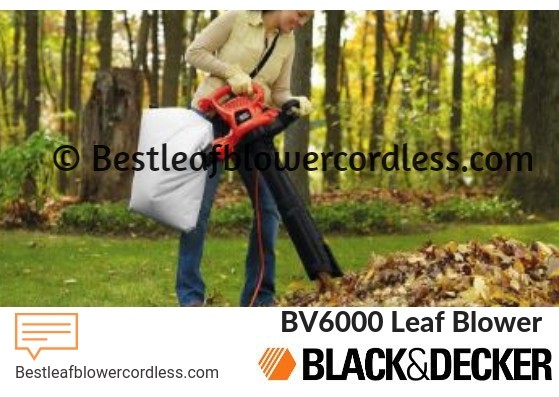 Black Decker BV6000 Leaf Blower Reviews