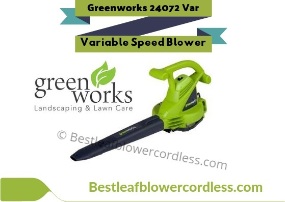 Greenworks 24072 Variable Speed Blower Reviews