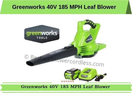 Greenworks 40V 185 MPH Leaf Blower Reviews