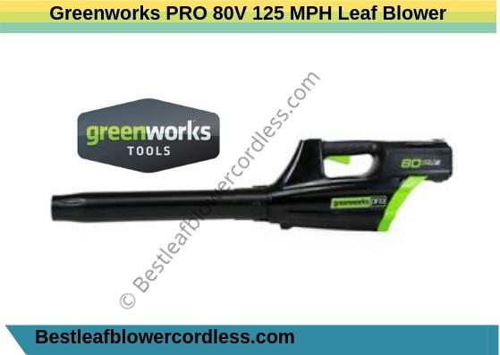 Greenworks PRO 80V 125 MPH Leaf Blower Reviews