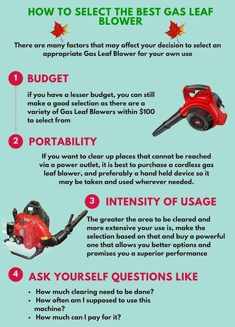 How to Select the Best Gas Leaf Blower - Guide