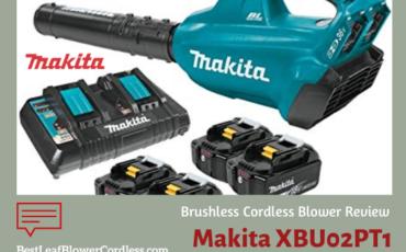 Makita XBU02PT1 Cordless Blower Reviews