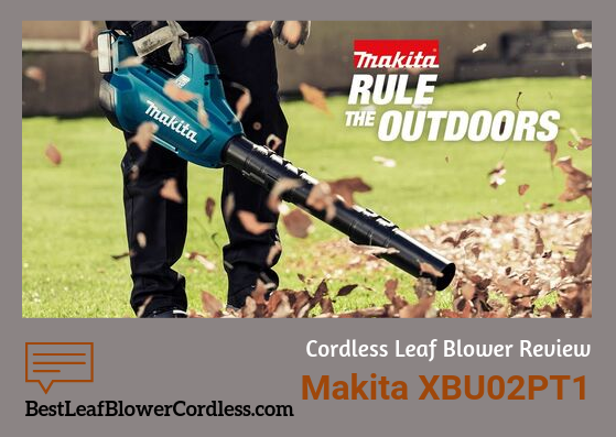 Makita XBU02PT1 Leaf Blower Review