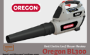 Oregon BL300 Cordless Leaf Blower Review