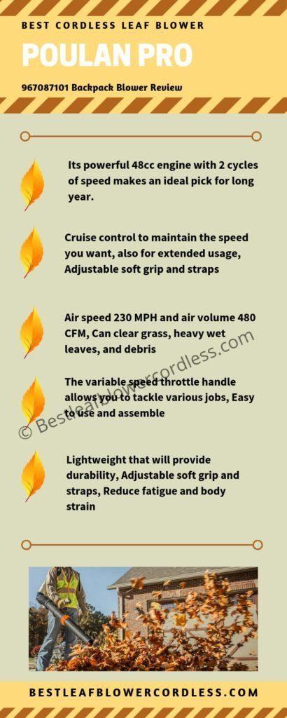 Poulan Pro PPB25 25cc 2-Cycle Leaf Blower Reviews