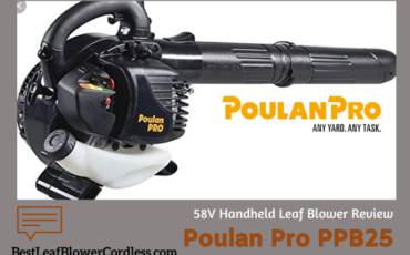 Poulan Pro PPB25 25cc 2-Cycle Leaf Blower Reviews