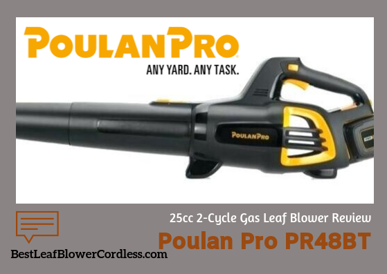 Poulan-Pro-PR48BT-25cc-2-Cycle-Leaf-Blower-Reviews