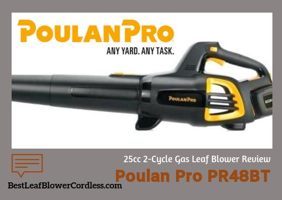 Poulan-Pro-PR48BT-25cc-2-Cycle-Leaf-Blower-Reviews