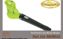 Sun Joe SBJ601E Leaf Blower Review