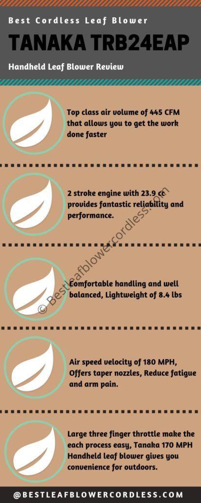 Tanaka TRB24EAP Handheld Leaf Blower Reviews