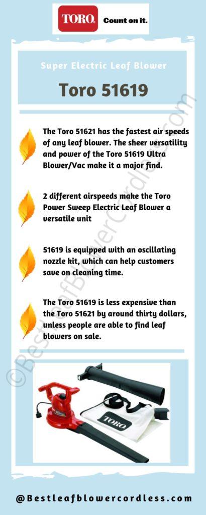 Toro 51619 Leaf Blower Review