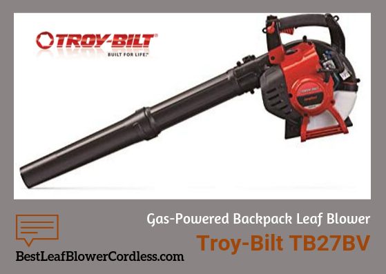 Troy-Bilt-TB27BV-Gas-Blower-Reviews