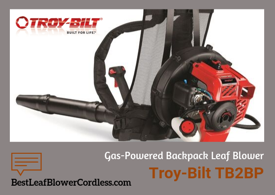 Troy-Bilt-TB2BP-EC-Reviews