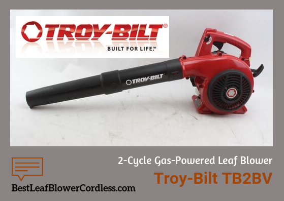 Troy-Bilt-TB2BV-EC-2-Cycle-Blower-Reviews