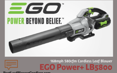 EGO Power LB5800 168mph 580cfm Cordless Blower Review