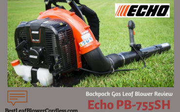 Echo PB-755SH Backpack Leaf Blower Review