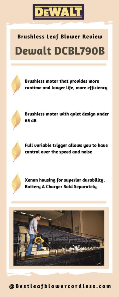 Dewalt DCBL790B Brushless Leaf Blower Review