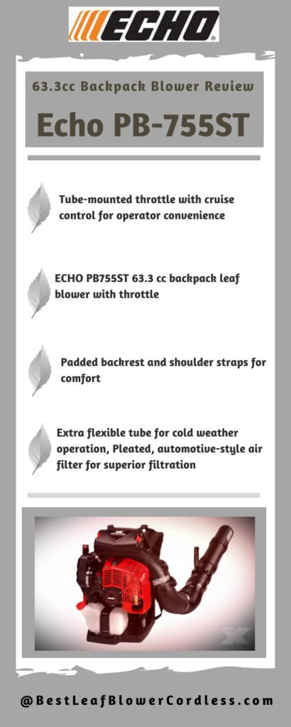 Echo PB-755ST blower Reviews