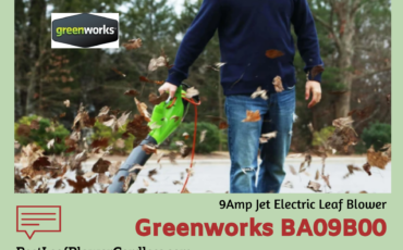 Greenworks BA09B00 9Amp Jet Electric Leaf Blower Review