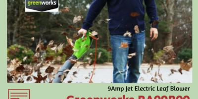 Greenworks BA09B00 9Amp Jet Electric Leaf Blower Review