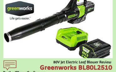 Greenworks BL80L2510 Leaf Blower Review
