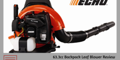 echo backpack blower pb-755st