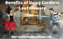 Benefits of Using Cordless Leaf Blowers