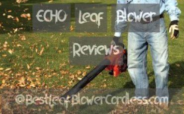 Best ECHO Leaf Blower Review