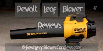 Dewalt Leaf Blower Reviews and Guide