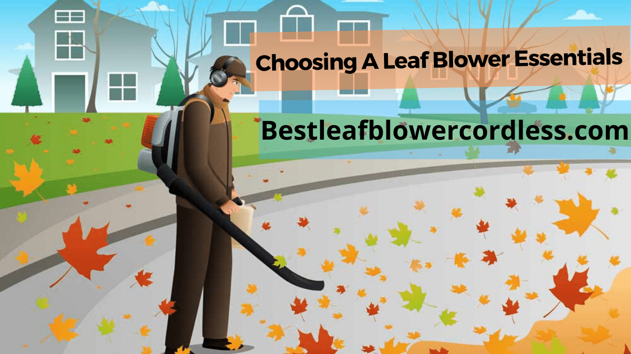 Factors To Consider When Choosing A Leaf Blower