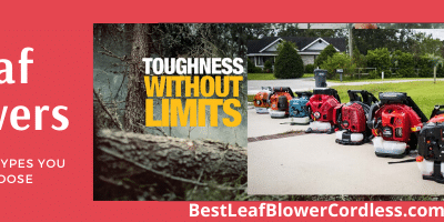 How many Types of Leaf Blower you can Choose
