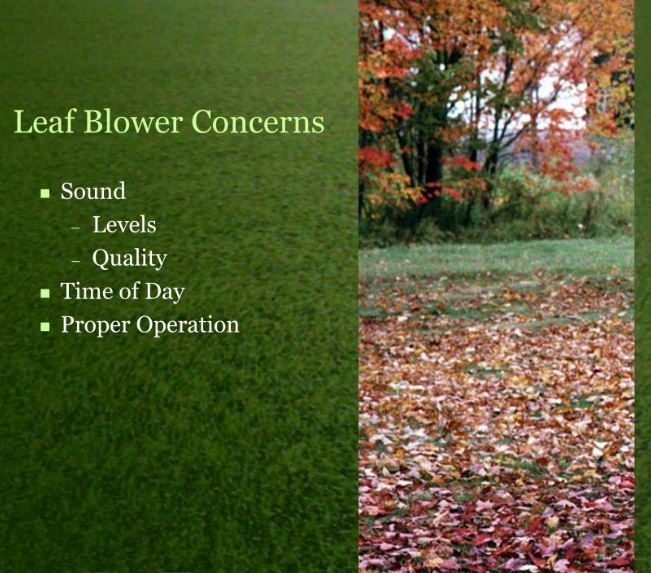 Best Leaf Blower Concerns