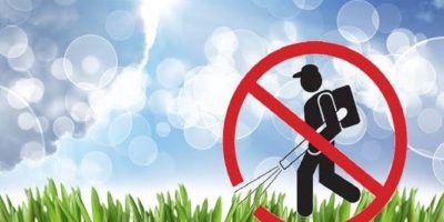 Leaf Blower Ordinances and improvements