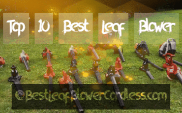 Top 10 Best Leaf Blower review