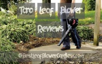 Toro Leaf Blower Reviews and Guide