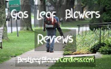 Gas leaf blower Reviews