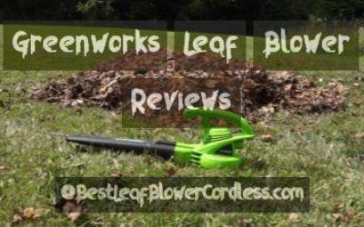 Greenworks Leaf Blower Reviews and Guide