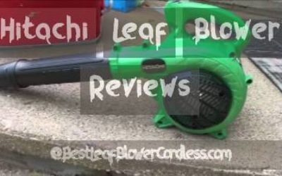 Hitachi Leaf Blower Reviews and Guide