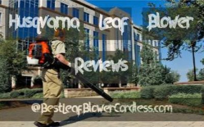 Husqvarna Leaf Blower Reviews and Guide