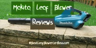 Makita Leaf Blower Reviews and Guide