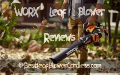 WORX Leaf Blower Reviews and Guide