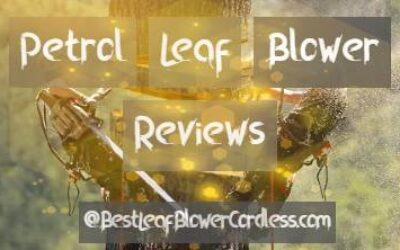 Best Petrol Leaf Blower Reviews Guide
