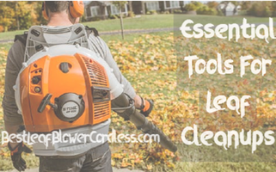 Essential Tools For Leaf Cleanups Job