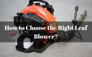 How to Select The Right Leaf Blower for Your Needs