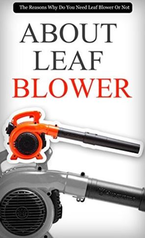 Why you Need Leaf Blowers for your Yard