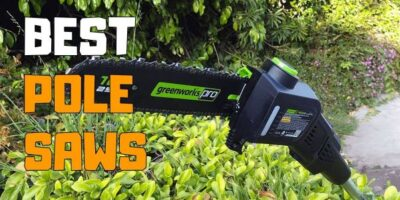 Best Pole Saw Review and Buying Guide